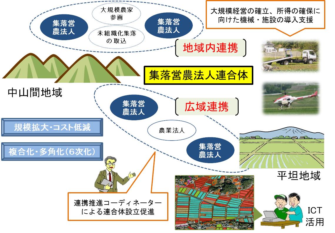 集落営農法人連合体の育成