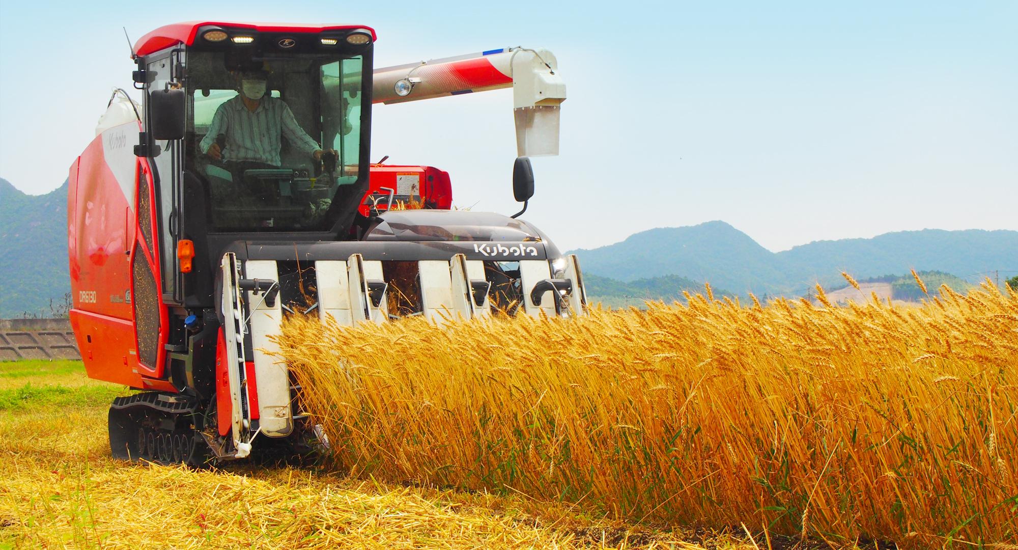 担い手を育て支援する取組みや、農地中間管理機構の事業を活用し、担い手経営体への農地集積を進めています。