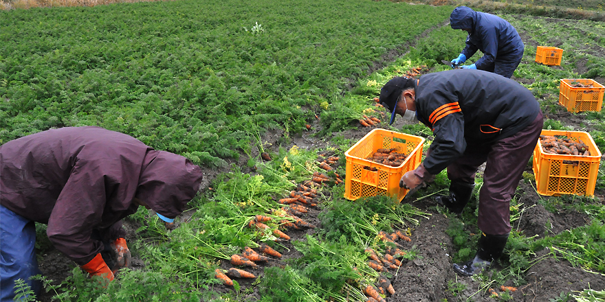 山口県地域農業戦略協議会 概要